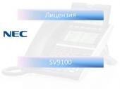 SV9100 ENCRYPTION LIC Лицензия на шифрование для SV9100
